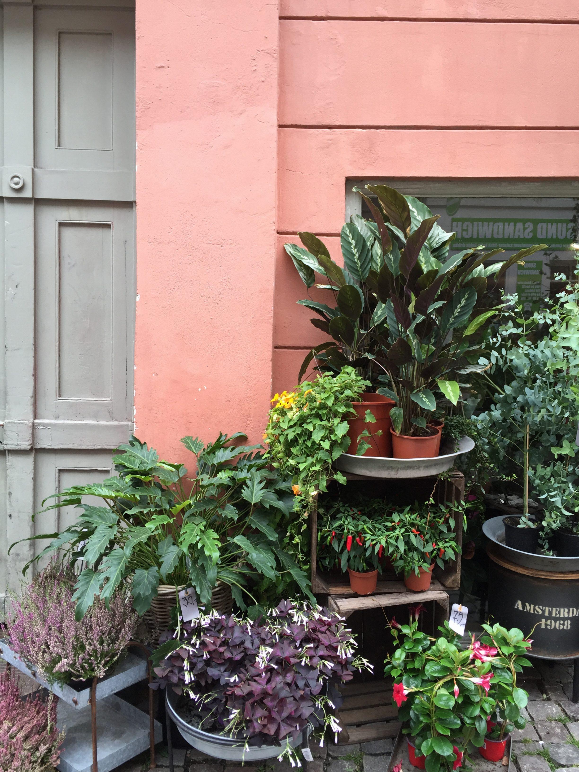 Citytrip naar Kopenhagen – Instagram waardige fietsen & gekleurde huizen