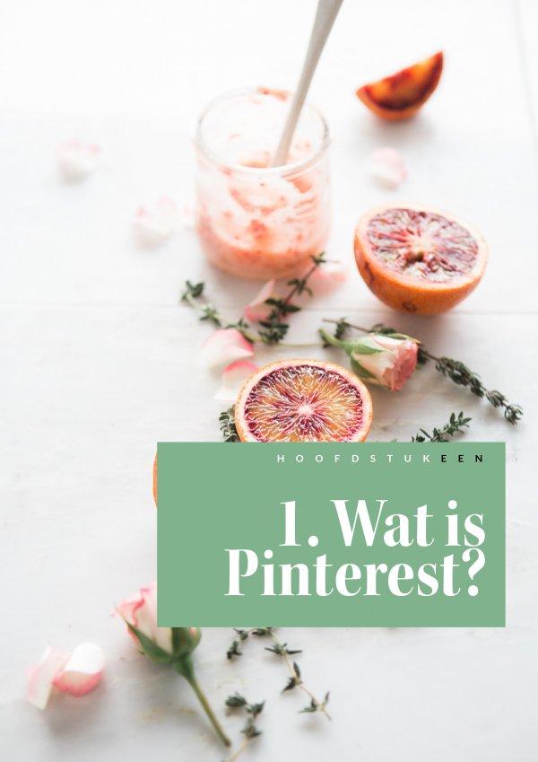 E-book Haal alles uit Pinterest 2.pdf