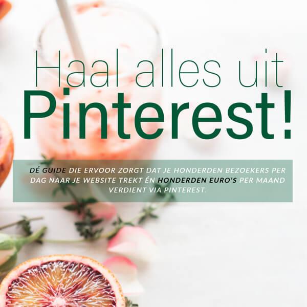 Lancering e-book 'Haal alles uit Pinterest'