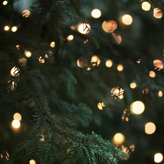 Hoe ziet jouw kerstboom er dit jaar uit?
